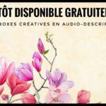 Boxes créatives en audio-description